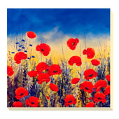 Sunset Poppies I